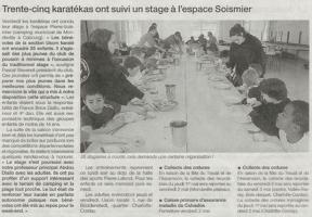 Trente-cinq karatékas ont suivi un stage à l'espace Soismier