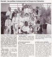 Karaté : les petites moissonnent la Coupe du Calvados