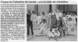 Coupe du Calvados de karaté : une kyrielle de médailles